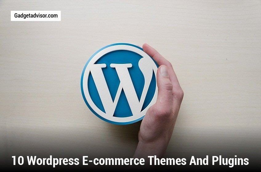 10 WordPress E-commerce Themes and Plugins